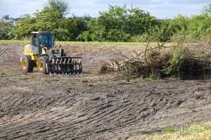 Lot and Land Clearing Services