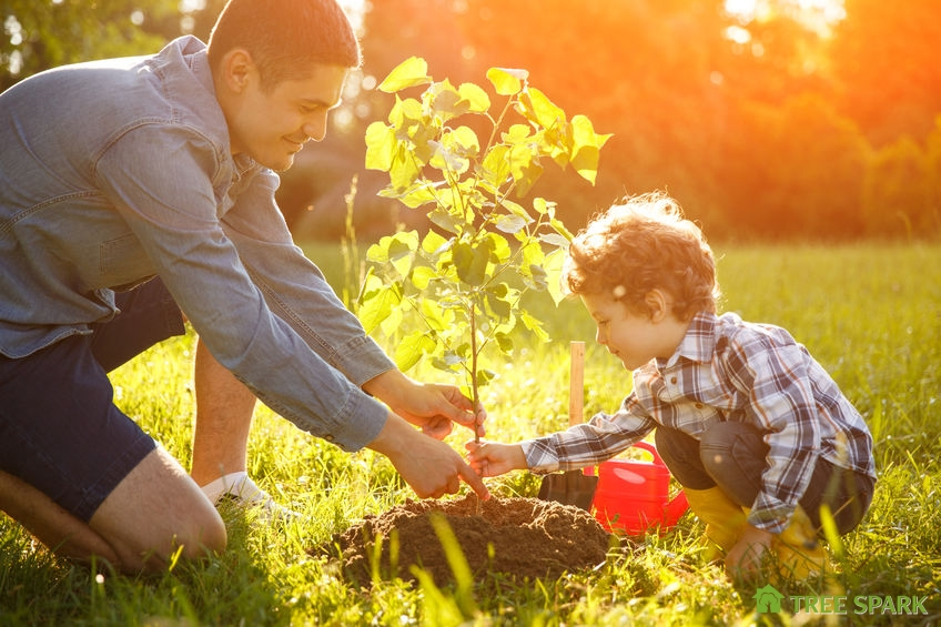 Boy & Father Planting a Tree